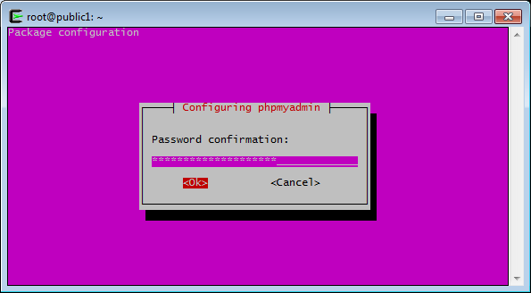 phpMyAdmin Passwortbestätigung